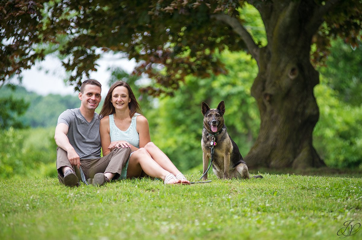 dog engagement photo