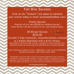 Fall Mini Session Special!