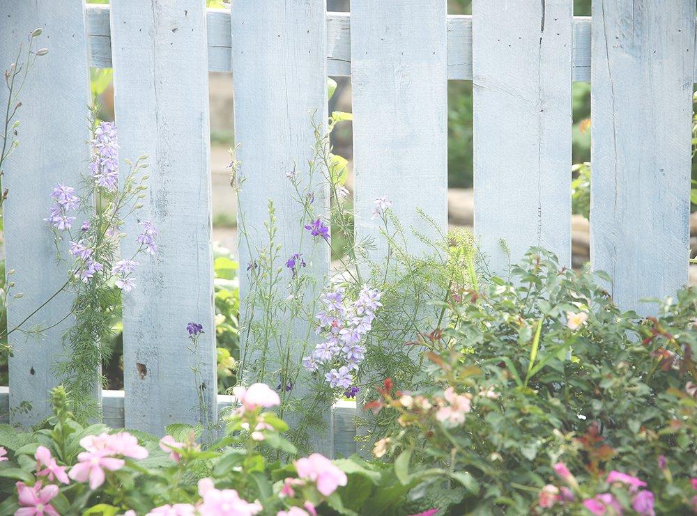 Swell English Cottage Garden Photo Studio Misty Westebbe Photography Download Free Architecture Designs Viewormadebymaigaardcom